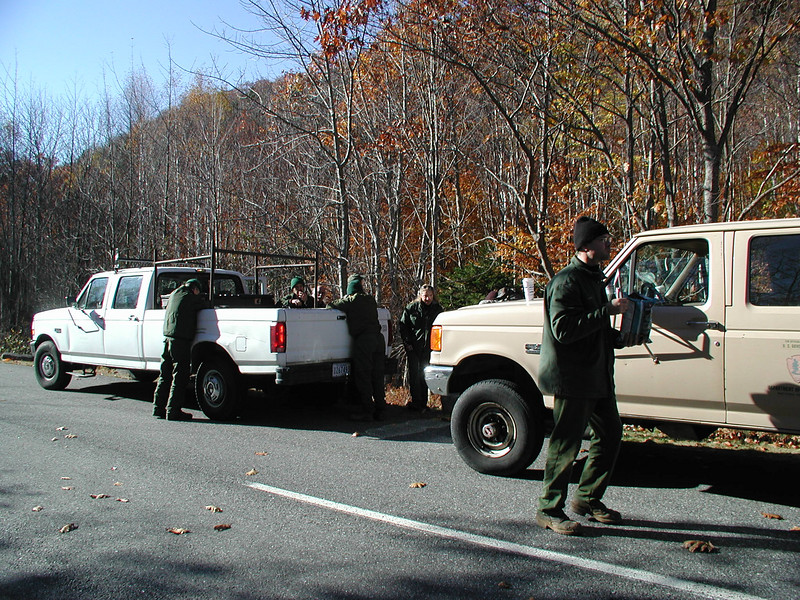 Arrival at the Trailhead