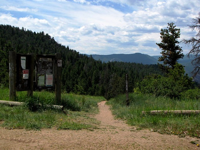 a trail at Roosevelt National Forest