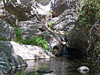 LOWER POOL<br /> It always amazes me at the greenery in this area contrasted with the smooth rocks.