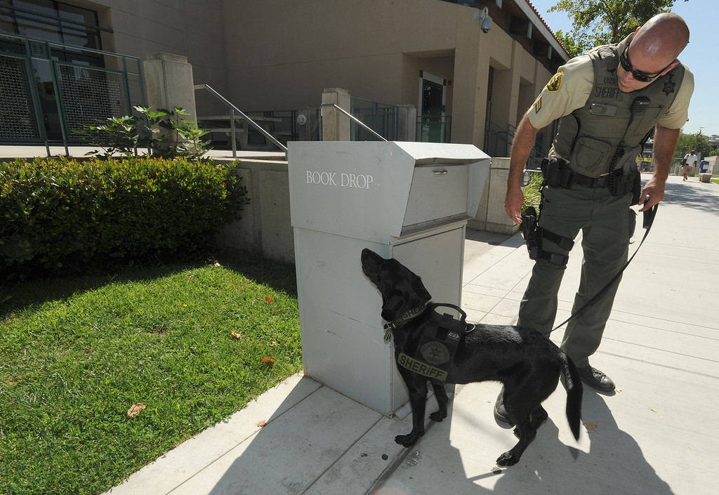. Sheriff\'s Deputy Guillermo Loza and Tula inspect a book drop box on the campus of Mission College. Tula is a former Marine dog that did multiple tours in Afghanistan. Tula is now working as an Explosives Detection Canine with the Sheriff\'s Dept.\'s County Services Bureau. When the Marines began downsizing the force in Afghanistan, they contacted US law enforcement agencies to see who might be interested in adopting their dogs., CA. 8/13/2013(John McCoy/LA Daily News)
