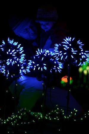 10 Months - Botanical Light Garden