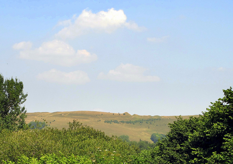 The hillfort of Hambledon Hill waiting a mile or two away.