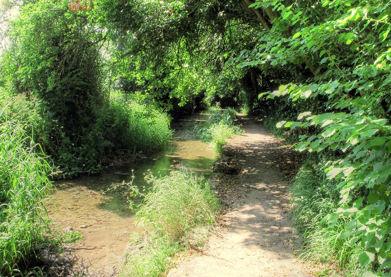 The footpath (Stour Valley Way) with the River Iwerne alongside walking towards Stourpaine.