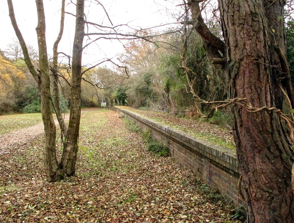 The old station platform still remains - I can't help thinking these trees must have been a bit of a nuisance.