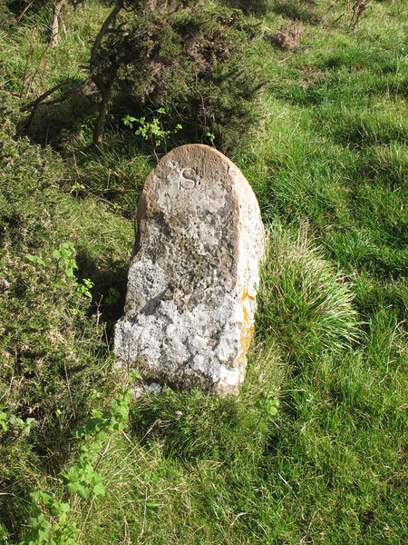Boundary stone. This stone marks the boundary between the parishes of Steeple & Kimmeridge.