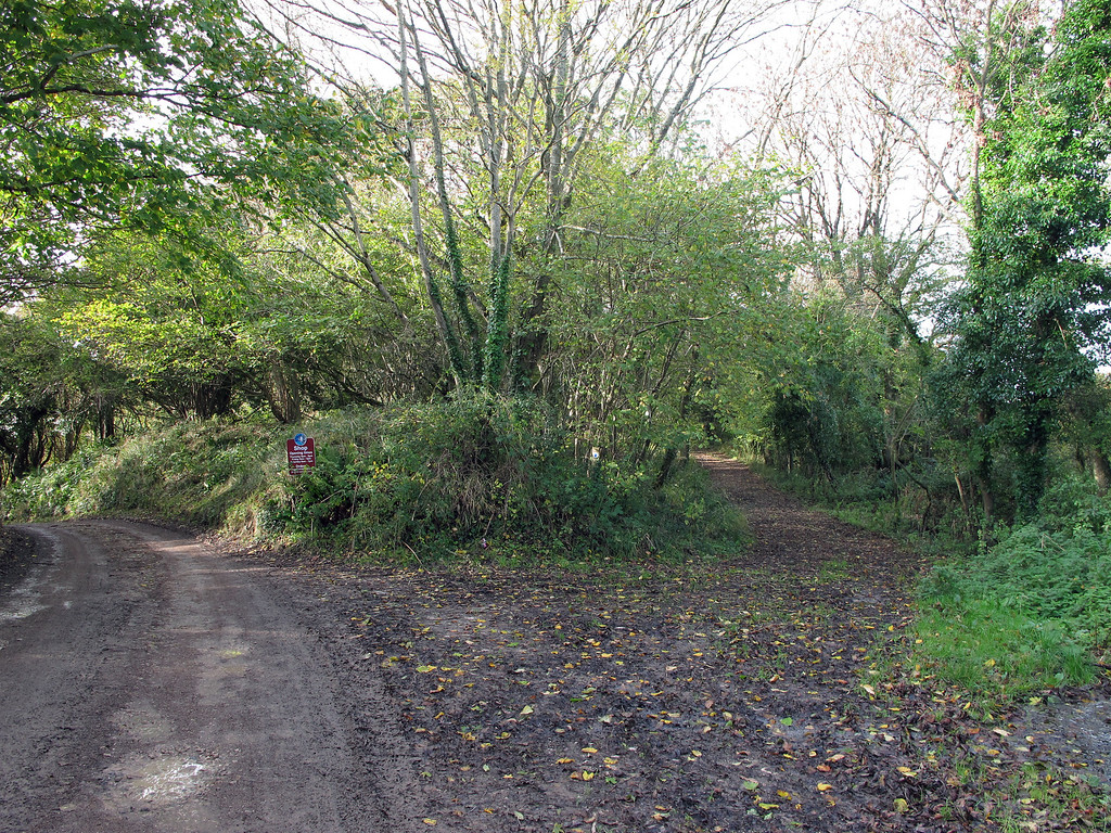 Farm shop to the left, bridleway on the right.