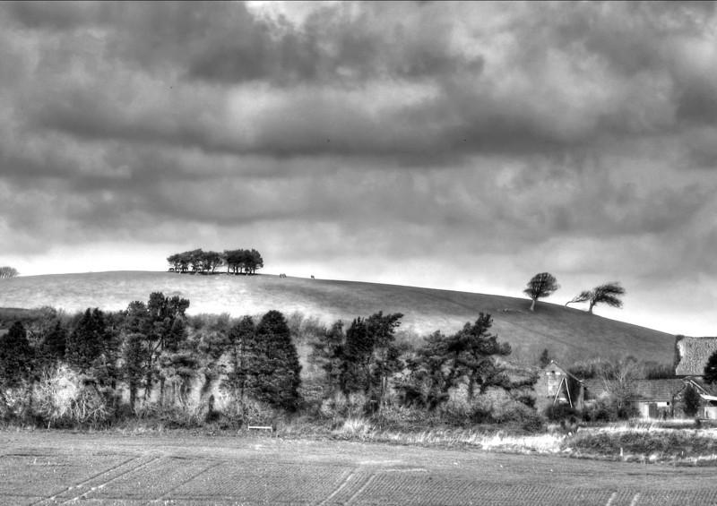 Park Copse and Alder Moor.