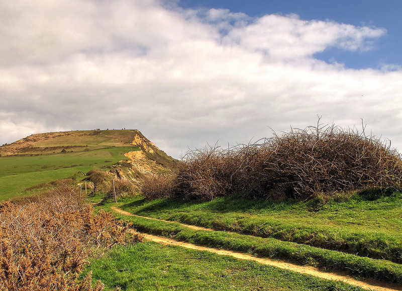 Onto the Coast Path now and Golden Cap lies ahead.