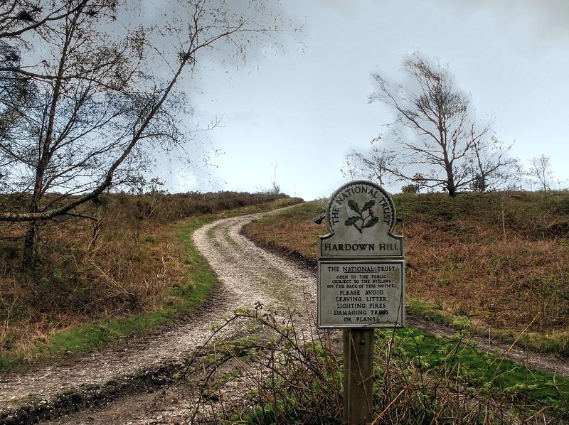 Up onto Hardown Hill.