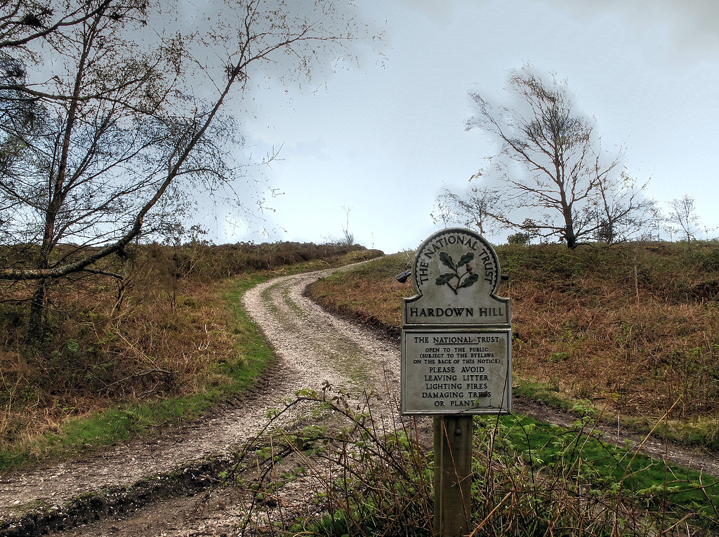 Up onto Hardown Hill.