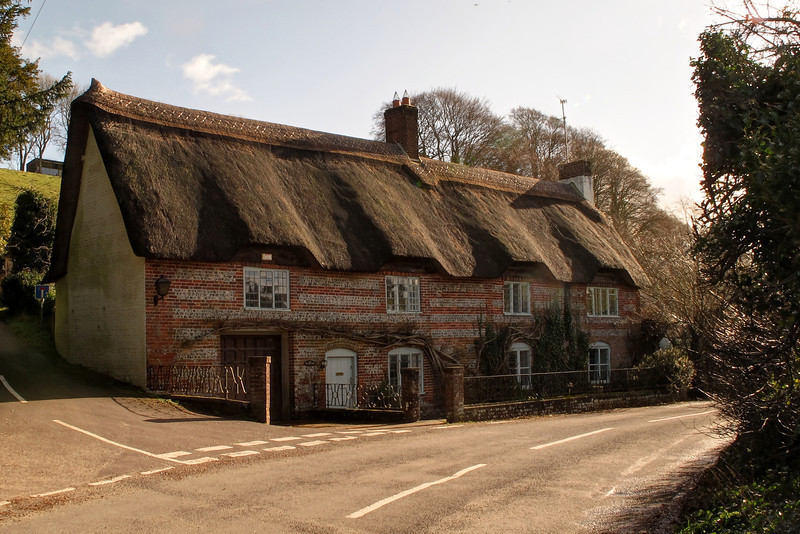 A charming cottage at Winterborne Stickland.   The road in front of it was closed due to flooding further along the road.