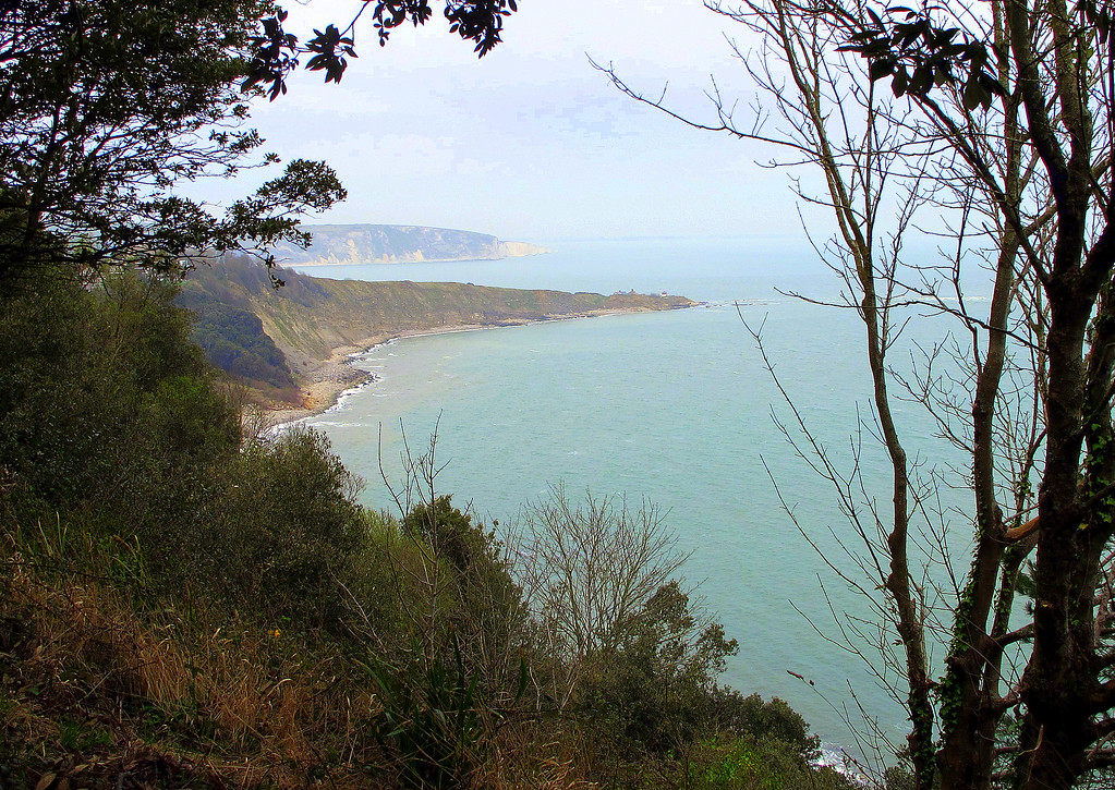 A picture taken from the coast path between Durlston Country Park and Swanage.   The headland in the centre is Peveril Point while Handfast Point and The Old harry Rocks are the further feature.