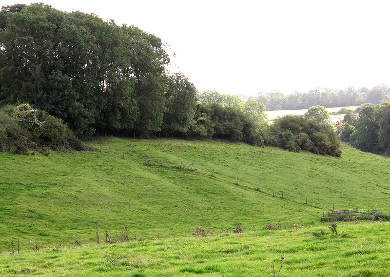 A fragment of the Roman Road which swept across this area is still visible as a mound with bank on either side running top left to bottom right near Manor Hill Cottage.