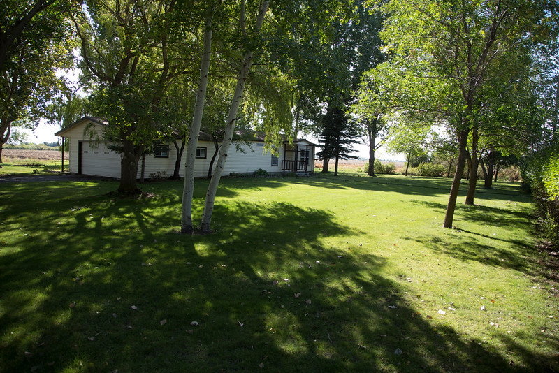 Front yard and front of house