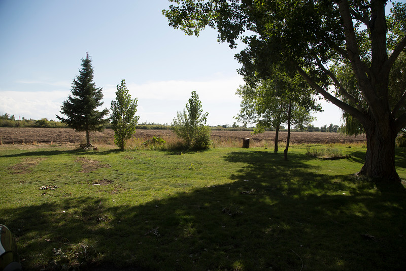Backyard... dirt is field (not part of property)