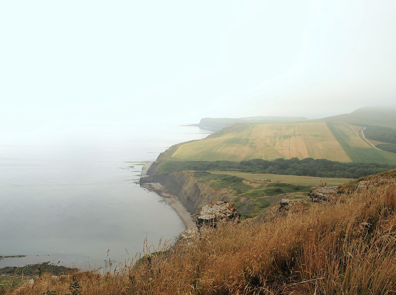 The South West Coast Path on to Kimmeridge (beyond the far point) is closed for repairs after several cliff falls along this stretch during the exceptionally wet winter.   The diversion takes the walker inland at this point to pass over Swyre Head, obscured by mist on the extreme right of the picture.