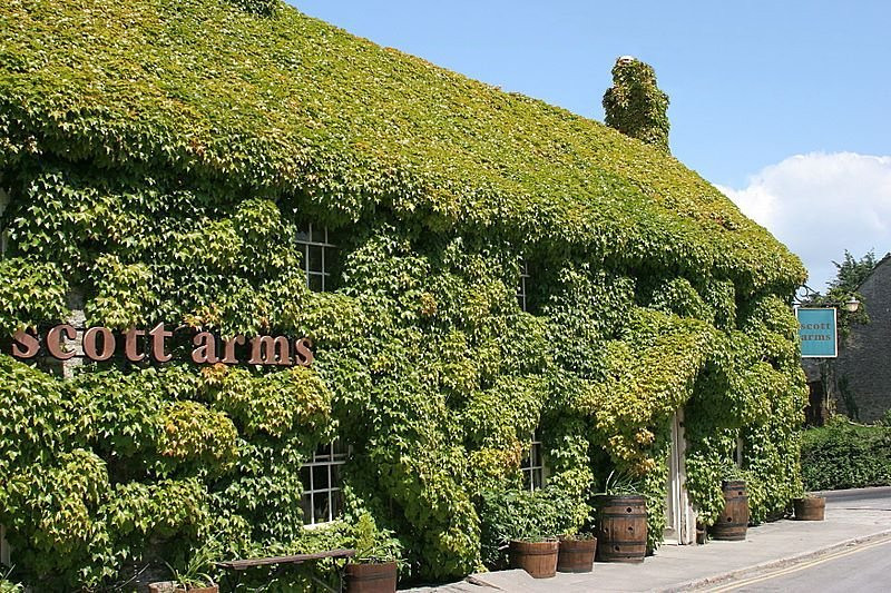 The Scott Arms, with its majestic coat of Virginia creeper, is named after Kingston's pre-eminent citizens, the Scotts. John Scott, the first Earl of Eldon, was the longest-ever serving Lord Chancellor, holding the role for twenty-six years.
