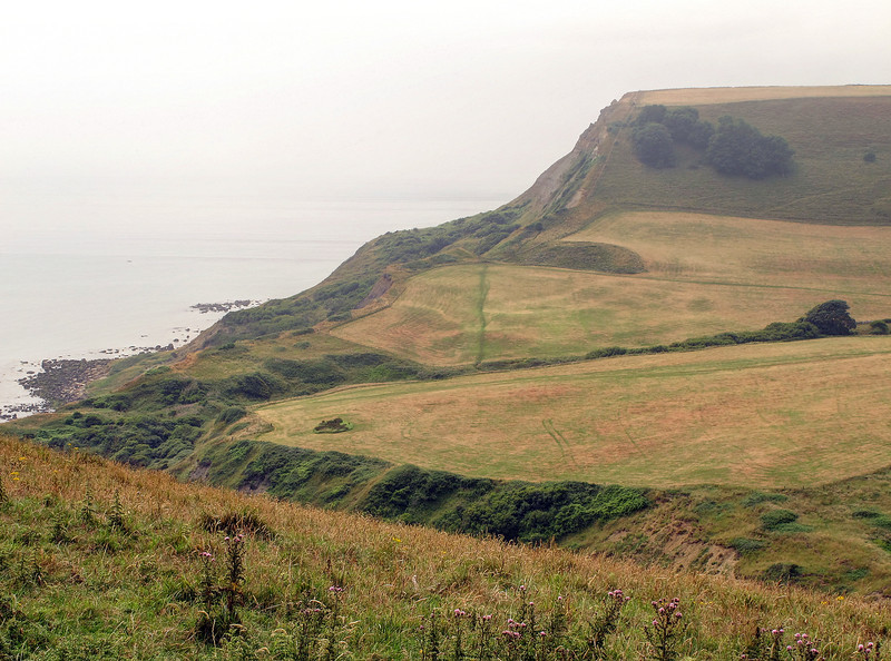 The last climb of the walk, up to the viewpoint of Houns Tout.