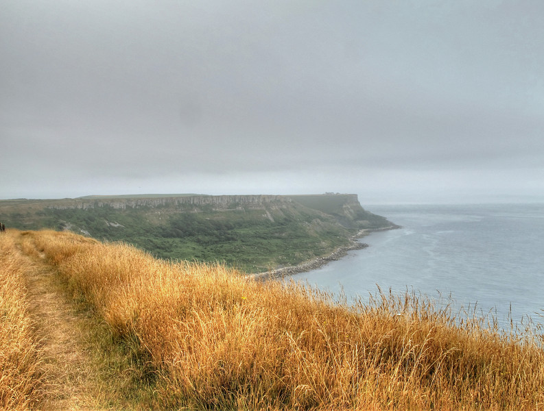 The view back to Eastwards from Houns Tout, the buildings of the old Coastguard cottages and lookout at St Aldhelm's Head clearly visible.