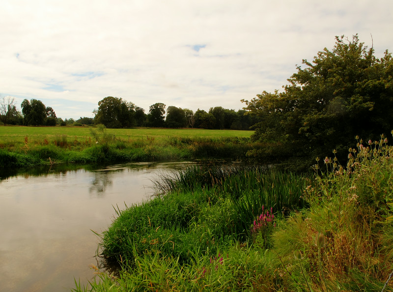 The river Stour near Canford.