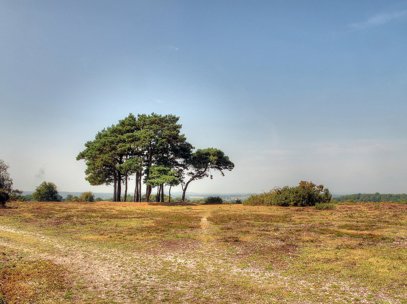 The open elevated surroundings with distant views from Chibden.