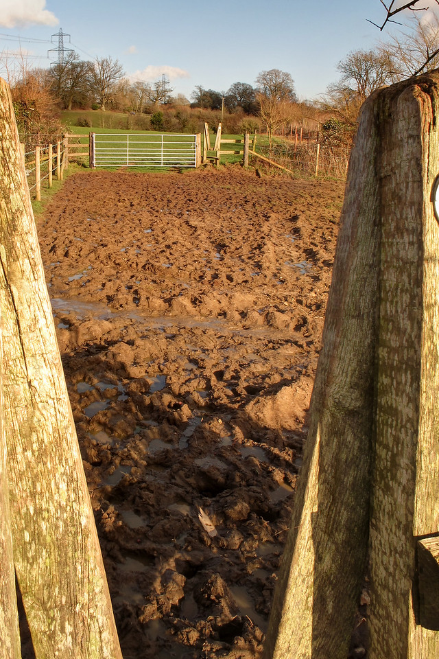 .... and there was mud!