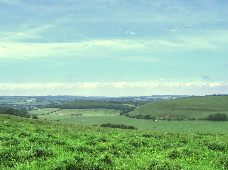 11.88 miles from Cattistock July 2013