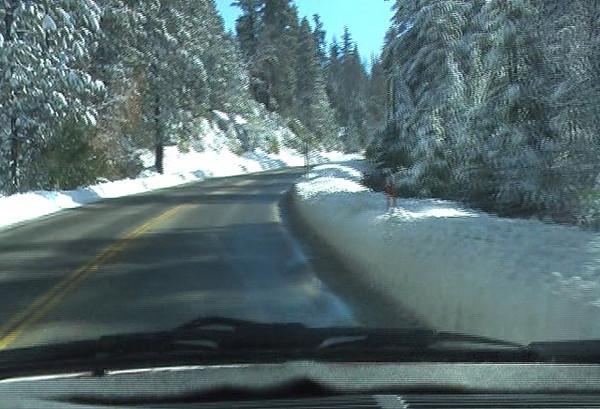 5,500-6,000 feet, heading towards Tamarack Ridge video.