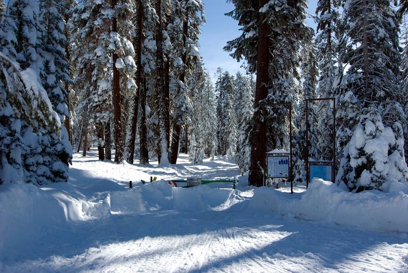 The Snow Play Area atop of Tammarack Ridge pic9