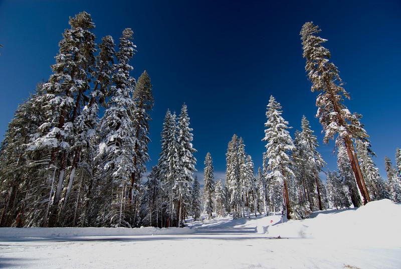 The Snow Play Area atop of Tammarack Ridge pic4