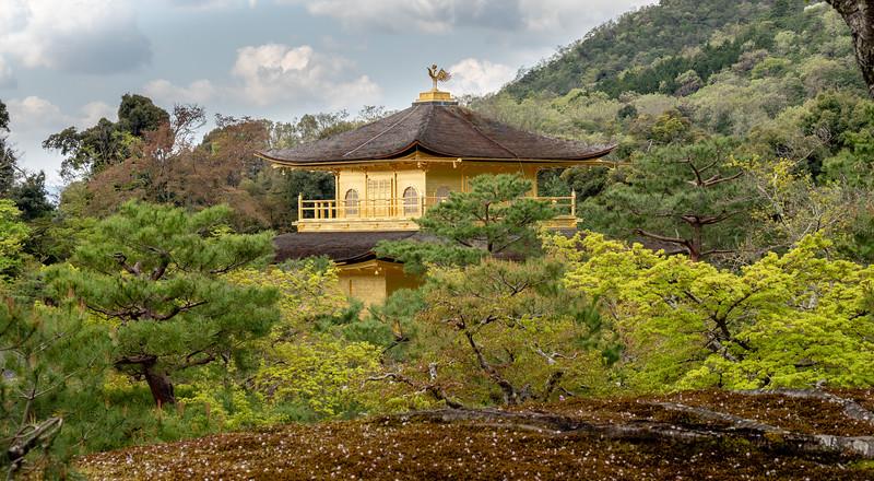 Kinkakuji (Golden Pavilion) Temple (14C), Kyoto