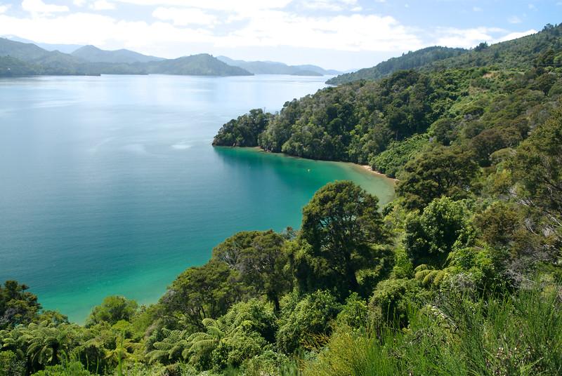 Grove Arm, South Island