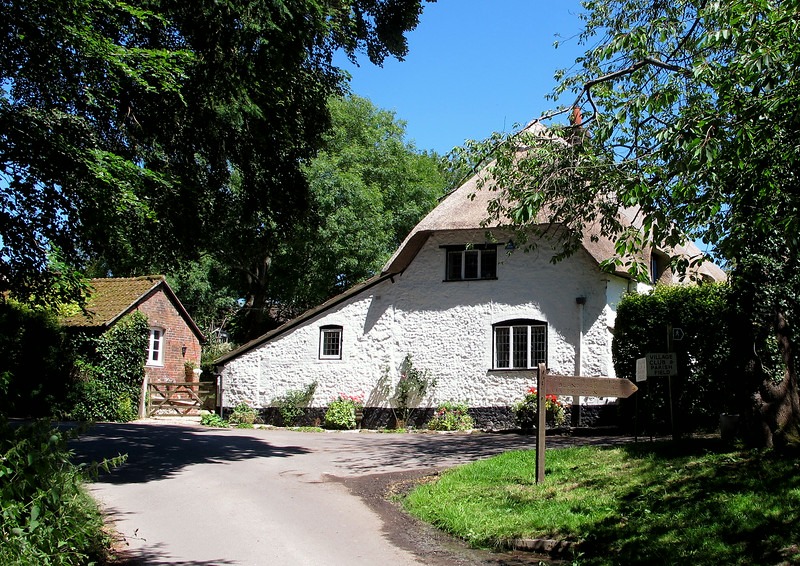 A big confident thatched cottage on the way out of the village.