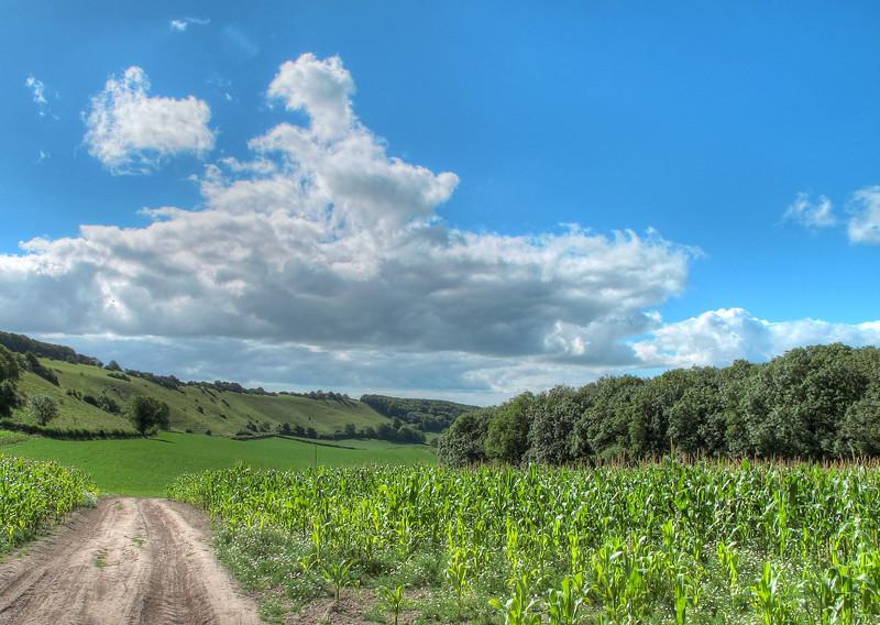 Southwest from Cross Dyke, near Folly.