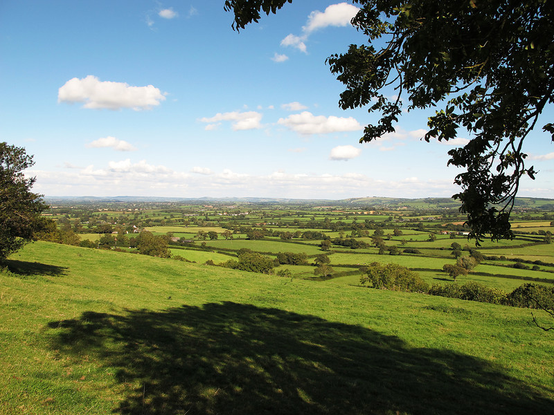 The scene from The Knoll near Buckland Newton looking towards the East.