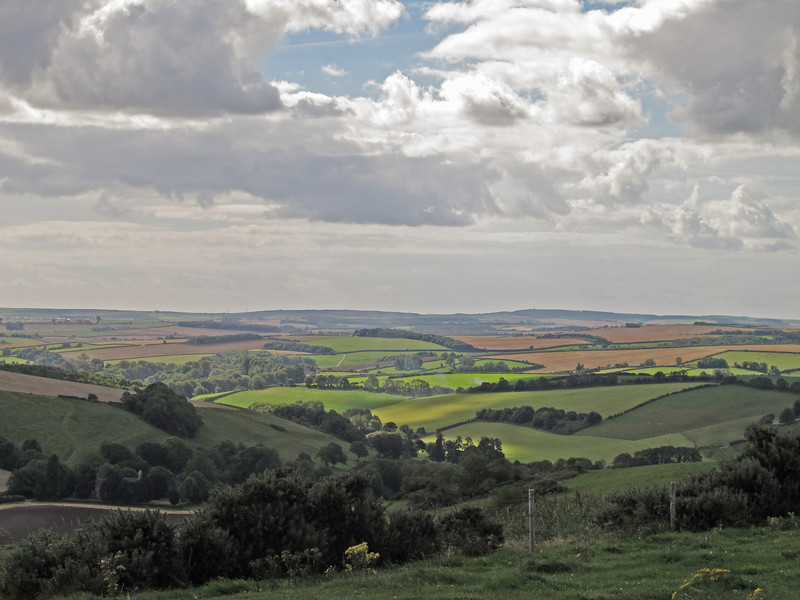 The countryside to the South from Ball Hill, looking over the area walked last week and towards the Hardy Monument, just visible on the horizon to the right of centre, the start of the walk 2 weeks previously.