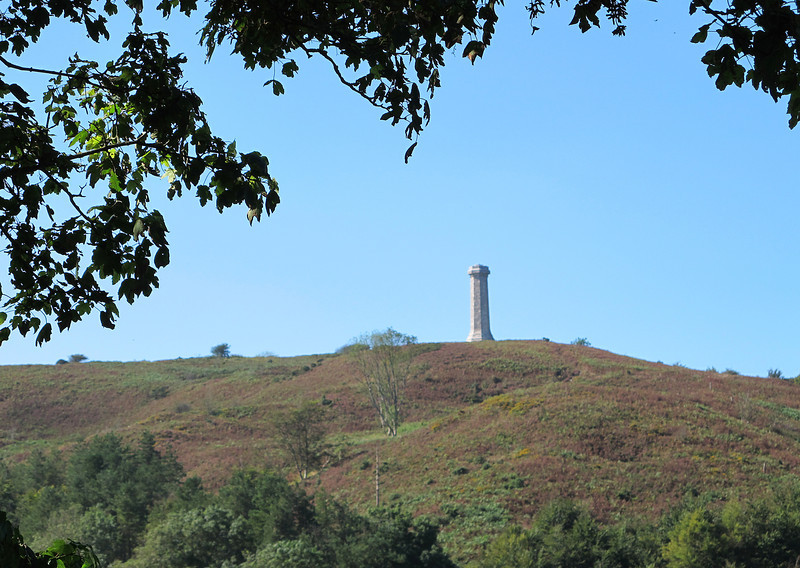 And back to the Hardy Monument standing tall on the hill.