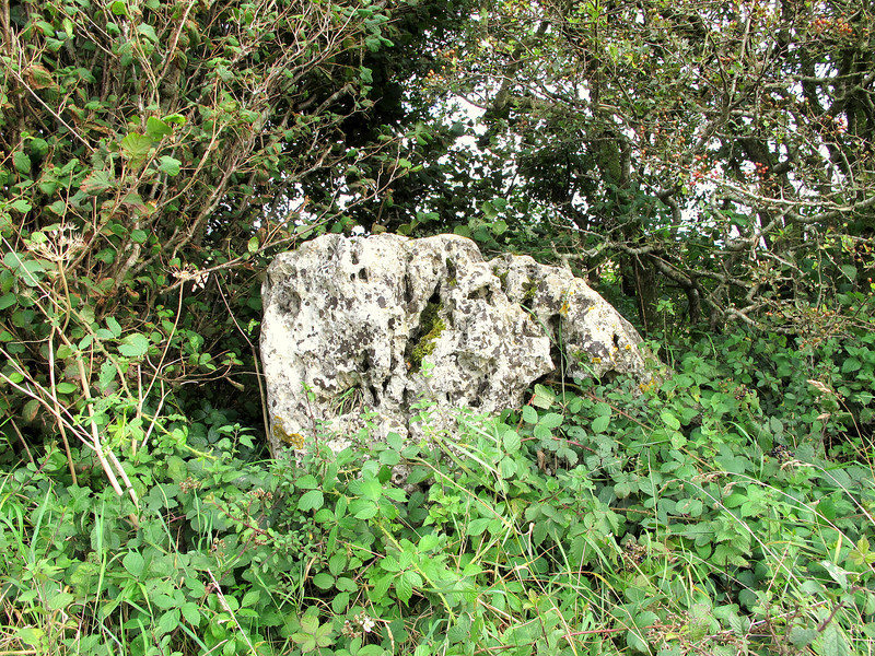 One of the ancient stones along the pre-Roman Ridgeway Track
