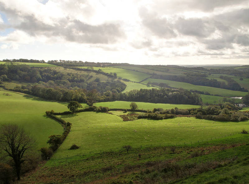 The view across Balmers Coombe Bottom.