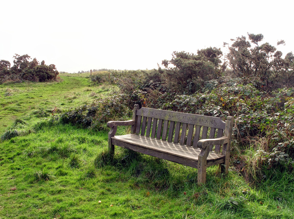 A rare sight, a welcome bench placed here by some thoughtful person.
