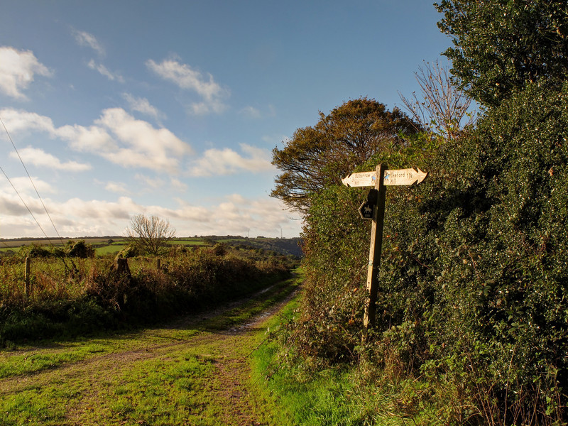 The characteristic wavy pointers on the sign show that this is the Wessex Ridgeway, dating back to pre-Roman times.