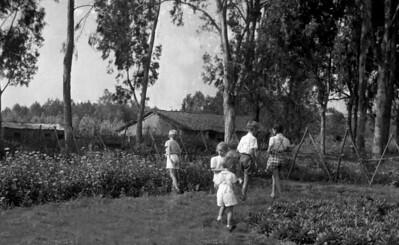 De kinderen in de tuin.