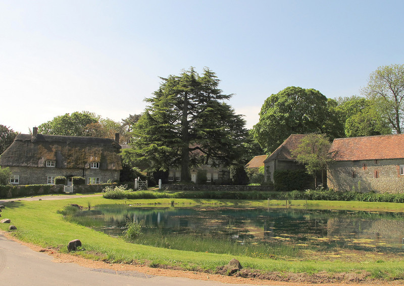 The Duck Pond at Ashmore