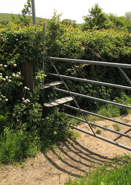 A novel style on a galvanised field gate at Fontmell Magna.