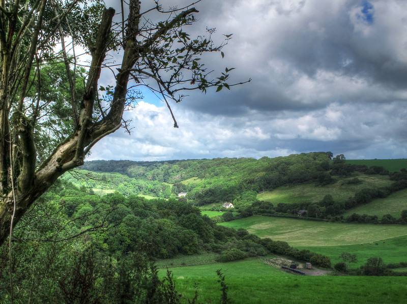 The view from Green Hill towards Crincombe Bottom.