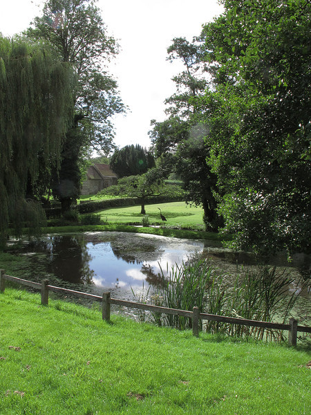 The pond and wier at Binghams Melcombe