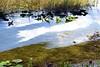 061a Lake Eustis 5-1-17