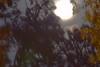 101a Super Moon 12-3-17