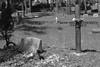 045a Pilgrims Rest Cemetery 4-27-17