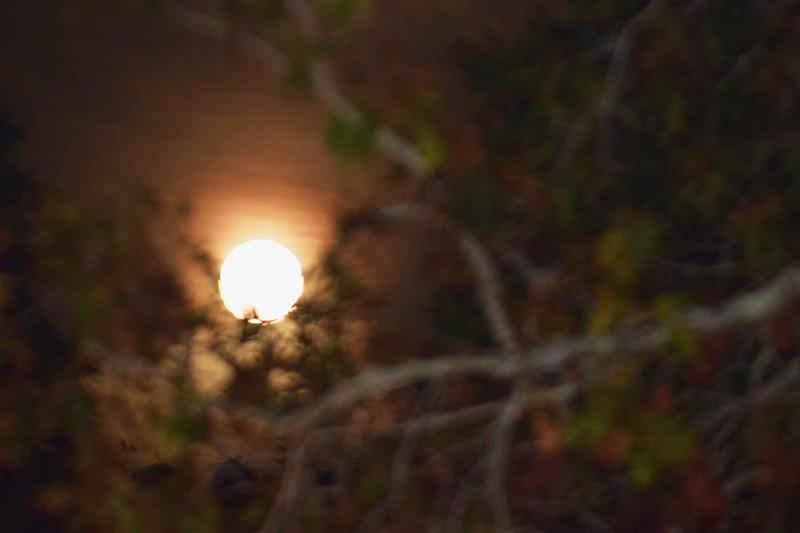 099a Super Moon 12-3-17